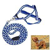AFfeco Reflektierendes Hundegeschirr aus Nylon, für Hunde und Katzen, Blau