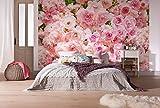 Komar 8-937368x 254cm'Rosa Fleur Rose Floral' Papier peint-Rose (lot de 8)