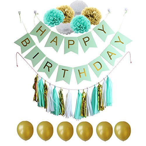 Amosfun 28 Pcs Tissue Paper Flowers Pom Poms Tassels DIY Paper Garland Banner Balloons Kit for Birthday Wedding Party Decoration (Mint Green Series)
