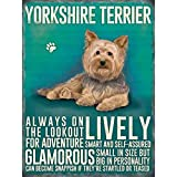 Mr.sign Yorkshire Terrier Dog Blechschilder Vintage Metall