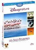 Les Ailes pourpres : le mystère des flamants [Combo Blu-ray + DVD]