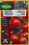 Vilmorin 6410999 Engrais Granules Tomates et Légumes Fruits Etui de 800 g 4 LG