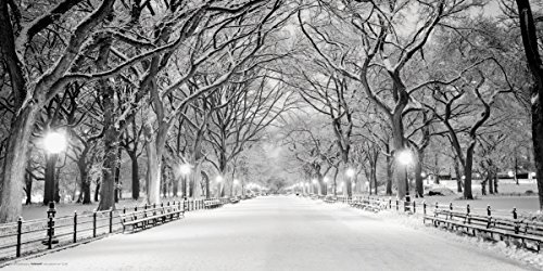 New York City (NYC) Central Park Mall in Snow Dekoratives Fotografie Poster Print 12 x 24