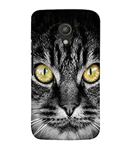 99Sublimation Cat with big eyes 3D Hard Polycarbonate Back Case Cover for Motorola Moto G2 :: 2nd Gen :: G XT1068 :: G 2nd Gen :: G Dual SIM 2nd gen :: G Dual SIM 2014