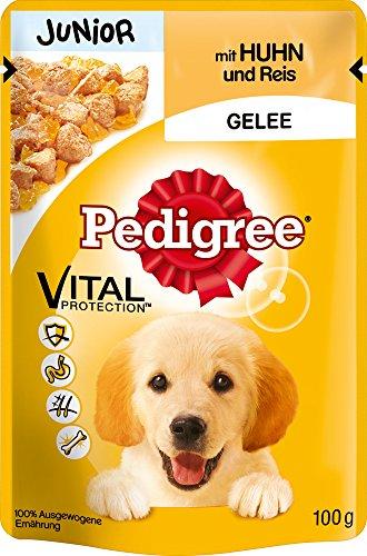 Pedigree Junior Hundefutter Huhn und Reis in Gelee, 24 Beutel (24 x 100 g) - 2