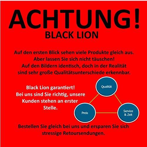 BLACK LION 20 Katzenspielzeug inklusive Katzenangel, Spielzeug für Katzen - 2