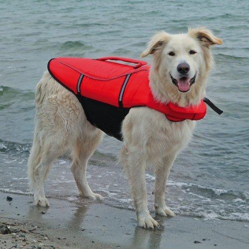 Artikelbild: Trixie 30145 Schwimmweste für Hunde, XL: 65 cm/max. 45 kg, rot / schwarz