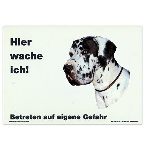 Schecker Warnschild Dogge harlekin in Weiß wetterfest 28x20 cm aus Kunststoff mit 2 große Aufkleber zum Auswechseln (Harlekin Dogge)