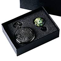 DR WHO Themed Black Effect Retro/Vintage Case Full Hunter Mens/Boys Quartz Pocket Watch Necklace Set - With Green Gallifrey Timelord Seal Pendant
