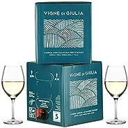 Bag in Box vino Friulano 5L + Bag in Box vino Sauvignon 5L - Vigne di Giulia