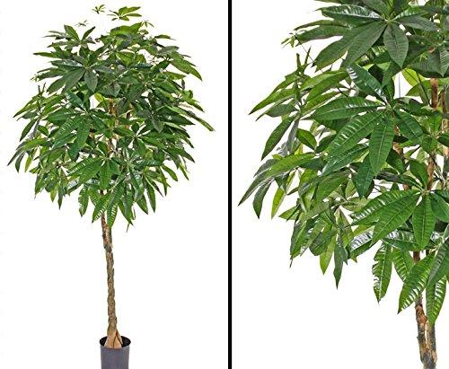 Pachira, gedrehter Stamm, 667 Blätter, 180cm, künstliche Baum – Kunstbaum