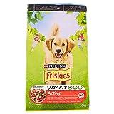 Friskies Chien Active Croquette Mix Viandes pour Chien Adulte 10 kg