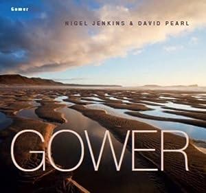 Gower by Nigel Jenkins