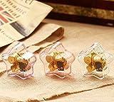 SunnyGod Perfekte Dekoration Spieldose Einfache Acrylpentagram-Spieluhr für Geschenk Hauptdekoration-hellpurpurn, Canon