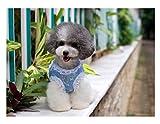 LooBoo Hunde Weiches Hundegeschirr anti-traction Vest Geschirr atmungsaktiv verstellbar komfortabel für Welpen Katze Tiere blau