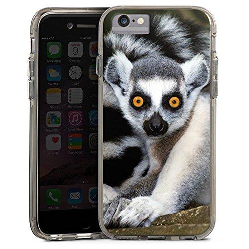 Apple iPhone 6 Plus Bumper Hülle Bumper Case Glitzer Hülle Lemur Affe Madagaskar Bumper Case transparent grau