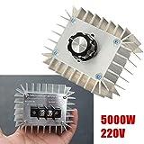 LaDicha Módulo Regulador De Voltaje Scr Del Regulador Electrónico De Alta Potencia De 5000W Ac 220V