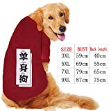 Xiaochushi Sweatshirt Mix&Match Super Soft Jumper PulloverCasual Long SleeveTops T-Shirt Autumn and Winter Golden Retriever Samoyed Dog Pet Clothes Dog Clothes-Wine red Single Dog_3XL