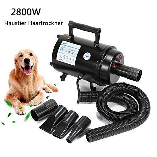 Paneltech 2800W Secador Pelo Mascotas Caninas Calentadora