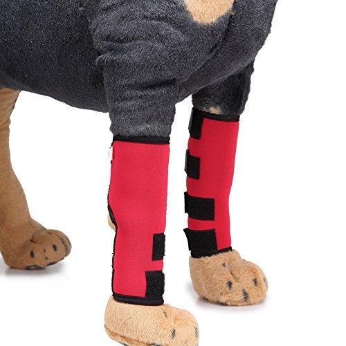 iKulilky 1 Paar Hunde Bein Unterstützung Schutz Handgelenk Bandage Haustier Gelenk Bandage Hunde Vorderbein Presshülse Wrap Kompressions-Verpackungs-schützen Wunden für Karpalgelenk Schutz Bandage