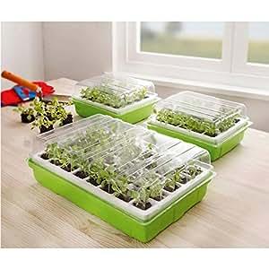 anzucht boxen 3er set pflanzen garten zucht box neu k che haushalt. Black Bedroom Furniture Sets. Home Design Ideas