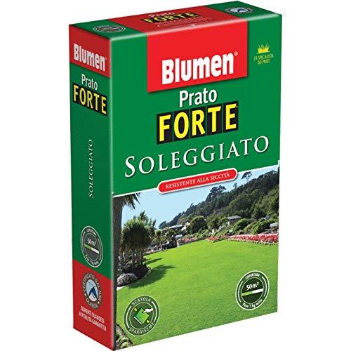 PRATO FORTE SOLEGGIATO - BUSTA GR 200