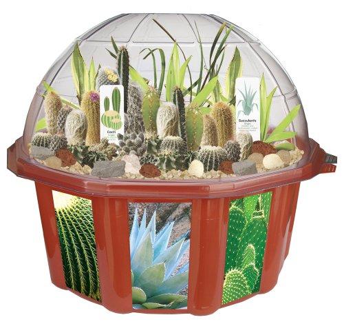 dunecraft-22848-desert-biodome-terrarium