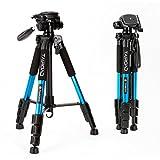 Tairoad T1-111 Reisekamera Stativ mit Transporttasche - 3-Wege-Neiger - schnelle Anpassung mit FlipLocks - kompatibel mit kompakten und spiegellosen Kameras von Nikon Canon Sony - blau