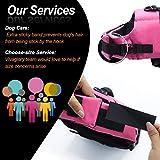 Vivaglory Hundeschwimmweste Doggy Float Coat Wassersport Schwimmhilfe Rettungsweste für Hunde Haustier Mit Griff und Reflektoren, Rose, XS - 5