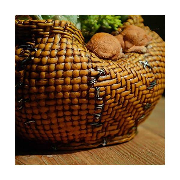 LASISZ Colección Sleeping Cat Bamboo Basket Decoración del hogar Accesorios y decoración de Jardines de Hadas y macetas Decoradas