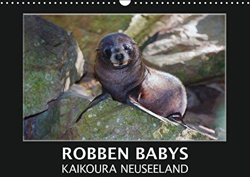 ura Neuseeland (Wandkalender 2016 DIN A3 quer): Nehmen Sie teil am Leben und Spielen süßer Robbenkinder in ihrer natürlichen ... (Monatskalender, 14 Seiten) (CALVENDO Tiere) (Nehmen Sie Teil)