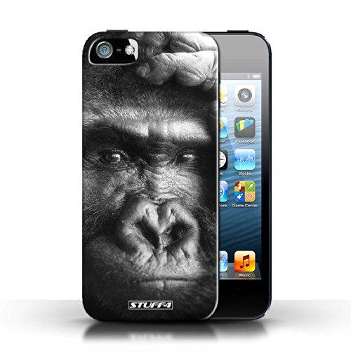 Hülle Case für Apple iPhone 5/5S / Faultier Entwurf / Zoo-Tiere Collection Gorilla / Affe