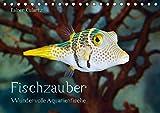 Fischzauber - Wundervolle Aquarienfische (Tischkalender 2019 DIN A5 quer): Kalender mit bezaubernden Aufnahmen von kleinen Fischen in Aquarien. (Monatskalender, 14 Seiten ) (CALVENDO Tiere)