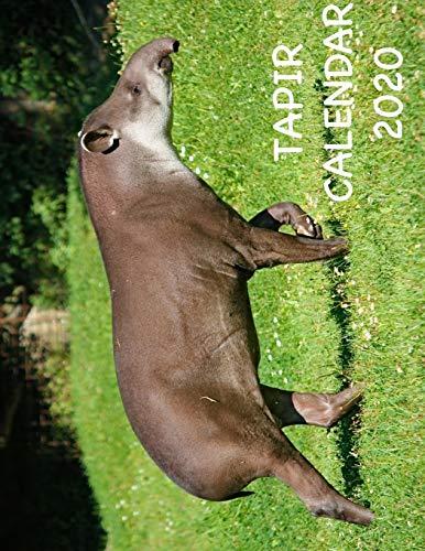 Tapir Calendar 2020