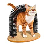 CWZJ Animale Domestico Gatto Gattino massaggiatore graffio adescamento Auto toElettatura Morbido Confortevole setole grattare Giocare NIP Animali di Lusso Carino