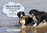 Max und Molly - zwei Hunde vertragen sich wieder. Kamishibai Bildkartenset.: Bilder betrachten. Wortschatz erweitern. Geschichten erzählen: ... für unser Erzähltheater Kamishibai)