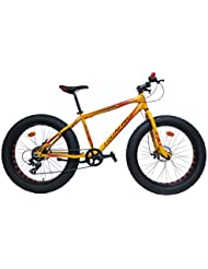 Bicicleta Route 66 Fat Bike de Aluminio