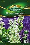 moscatel Salvia scharlei de QED linburger Semillas [MHD 01/2019]
