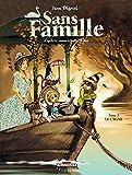 Sans Famille, Tome 3 : Le Cygne