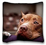 Xukmefat Pillow Pillow Cover Dog Eyes Pitbull Muzzle 18 in18 Twin Sides