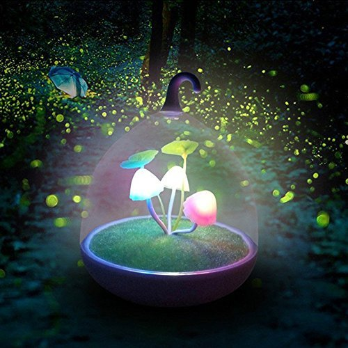 xinji tragbar Vogelkäfig Lampe Dimmbar Mushroom LED Sensor Touch Night Lights Low Stromverbrauch