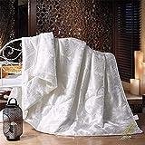 WanJiaMen'Shop 100% Seiden-Tröster-Füller Sommer-Winter-Seiden-Steppdecke-Bettdecke-Maulbeer-Tröster-Seidendecken-Bettdecken-König-Königin-Größe, weiß, 180x220cm 2.5kg