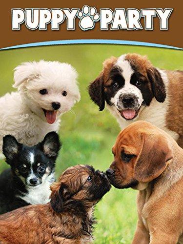 Puppy Party [OV]
