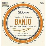 D'Addario EJ63I Cordes pour Banjo Light Tenor Irish 12-36