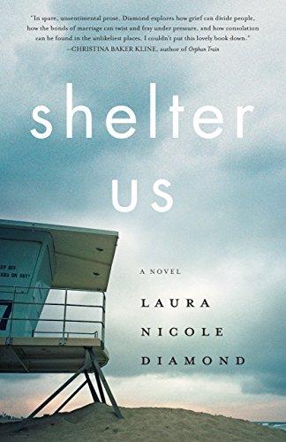 Shelter Us: A Novel