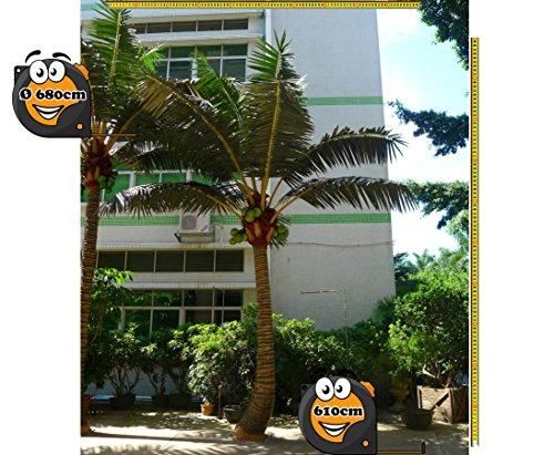 Kunstpalme gekrümmt für Außenbereich Höhe 610cm, Durch. ca. 680cm extrem widerstandsfähig –> Kunstpflanze Kunstbaum künstliche Palmen Kunstpalmen Dekopalmen Palmen
