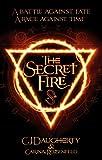 The Secret Fire (The Alchemist Chronicles Book 1) (English Edition)