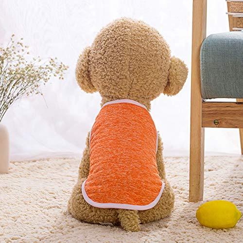 JullyeleITgant Cute Dog Cat T Shirt Gilet Pet Abbigliamento Apparel Gilet Costumi Abbigliamento