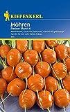 Möhren 'Pariser Markt 4' - Port./Saatgut