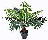 Yanka-style - Palma artificiale con vaso Pianta artificiale, altezza 60 cm, albero e fiori artificiali, idea regalo per arredamento, palma